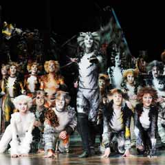Cats returns for Christmas 2015